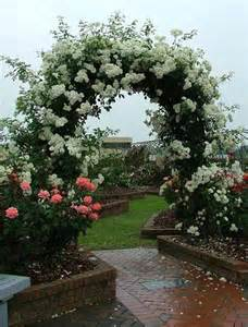 Backyard Florist by Roses For Beautiful Outdoor Decor Charming Garden Designs