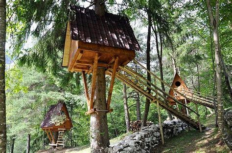 casa su albero vivere in una casa sull albero ecobnb