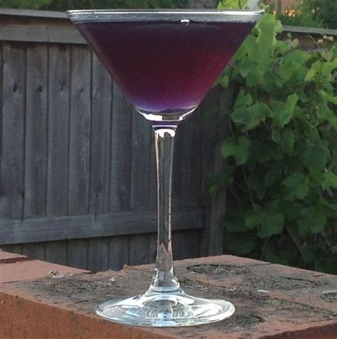 purple martini recipe 293 best images about ladies luncheon fashion show on