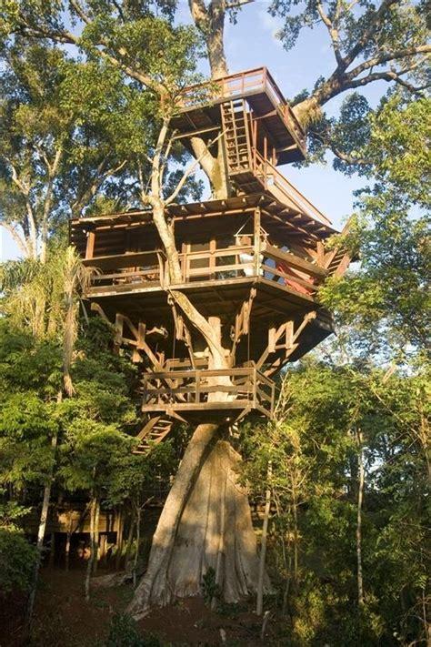 3 story treehouse in brazil tree houses pinterest
