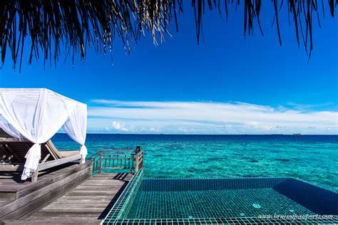 Beautiful hanging terrarium l in addition luxury design house inside