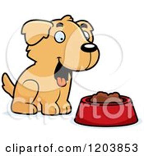 golden retriever food amount alimentos para perros golden retriever puppy amount of food