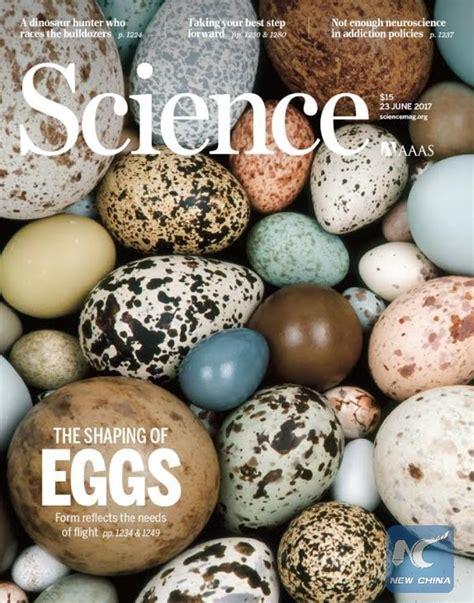 cardinal eggs color birds flight ability could determine shape of their eggs