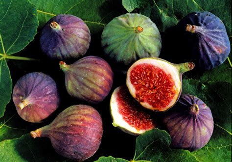 Kitchen Design Usa by How To Select Store And Cook Figs