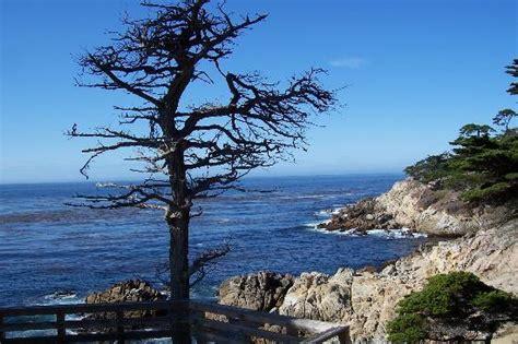 House Rentals In Monterey Bay Ca