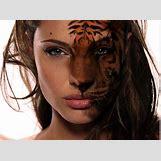 Half Lion Half Tiger Art | 1592 x 1184 jpeg 1371kB