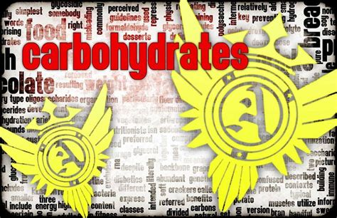 carbohydrates normally function in animals as 25 best ideas about extracellular fluid on