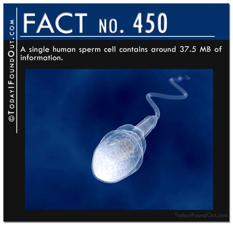 50 wacky things humans do amazing facts about the human wacky series books 25 amazing facts