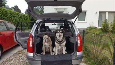 Hundegitter Auto by Hundegitter F 252 R Das Auto Mit Hund Sicher Im Auto