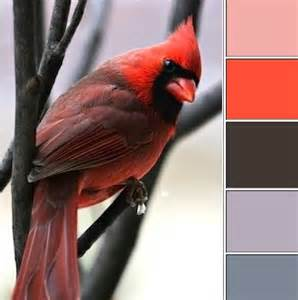 cardinal colors getaway color ways my favorite posts from 2012
