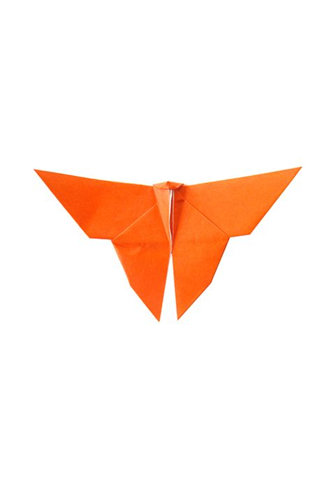 Orange Origami Paper - orange paper butterflies graceincrease custom origami