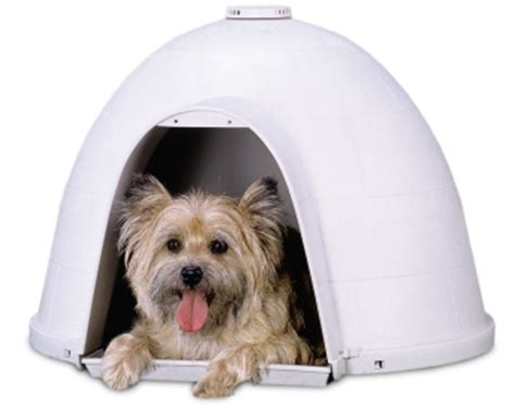 petmate dogloo xt dog house 6 warm houses and gadgets to keep your dog toasty this winter