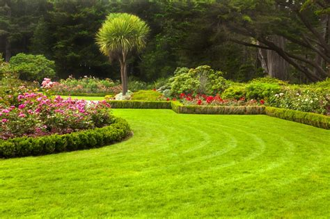 houston lawn care landscape design company 187 total lawn care