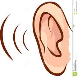 ear stock vector image of contour communication human