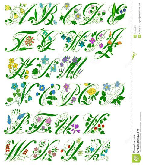 lettere decorate alfabeto fiore illustrazione di stock immagine di