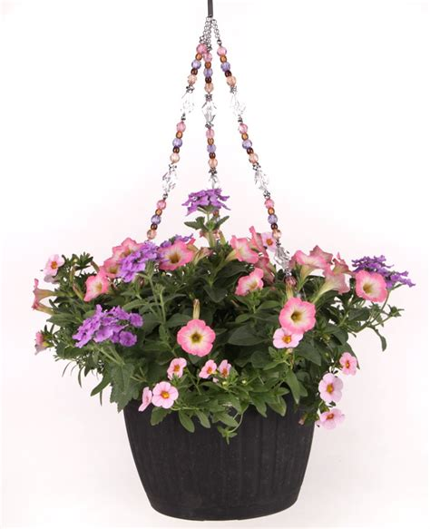 Potted Plant Hangers - nightlight beaded hanging basket costa farms farming and