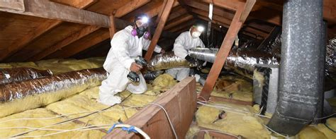 attic cleaning attic cleaning los angeles servicing ventura san