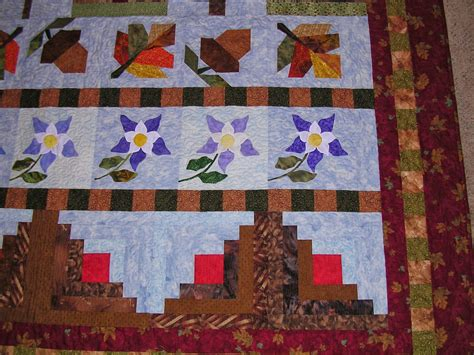 Row Quilt Patterns by Sew 2 Quilt Colorado Row Quilt