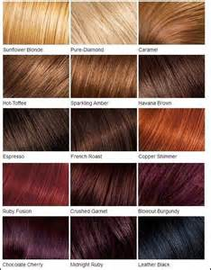 feria hair color chart 25 best ideas about feria hair color on
