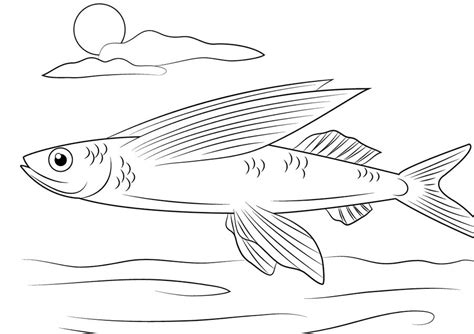 Coloring Pages Flying Fish Printable For Kids Adults Free Flying Fish Coloring Page