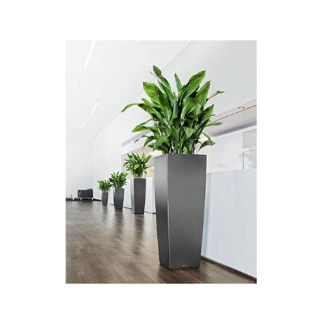 Lechuza Planters by Lechuza Cubico Alto Planter Newpro Containers