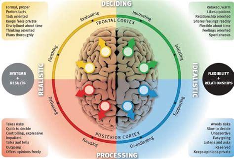 human brain mapping brain mapping jardine human capital