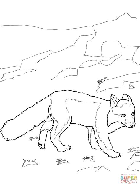 coloring page of arctic fox polar fox coloring page free printable coloring pages