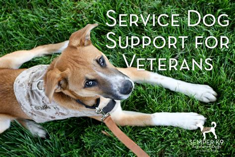 service for veterans service support for veterans semper k9