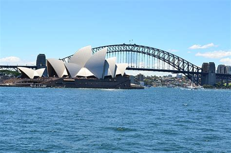sydney harbour christmas day lunch cruise tours to go