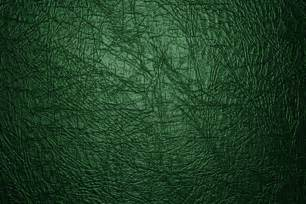 green leather texture up picture free photograph