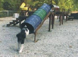 backyard obstacle course for dogs 117 best images about dog enrichment on pinterest dog daycare natural playgrounds