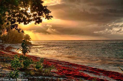 isla de mona de puerto rico florafauna datos isla de mona sunset 1 jpg