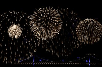 50 Amazing Fireworks Animated Gif Pics To Share Fireworks Powerpoint Animation