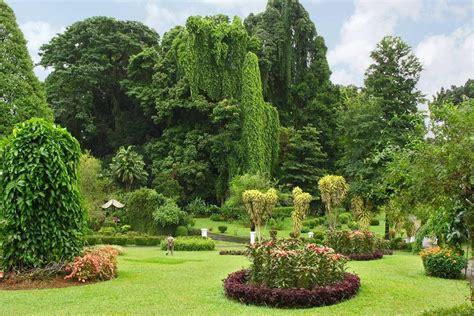 colombo giardini i giardini botanici e i giardini di spezie sri lanka
