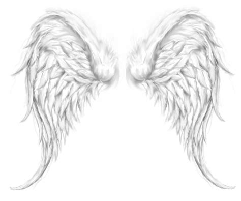 angel wing tattoo design grey ink wings design