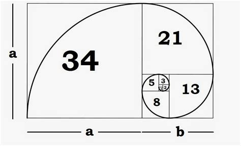 what is the golden section in art understanding the fibonacci sequence golden ratio