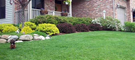 true green landscaping true green landscaping outdoor goods