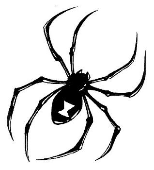 15 popular spider tattoo designs with meanings