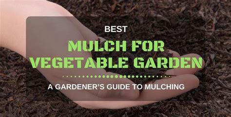 organic mulch for vegetable garden best mulch for vegetable garden 2017 a gardener s guide