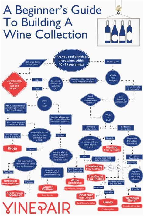 a beginner s guide to the beginner s guide to collecting wine vinepair