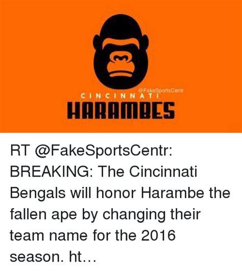 Cincinnati Bengals Memes - funny cincinnati bengals memes of 2016 on sizzle san