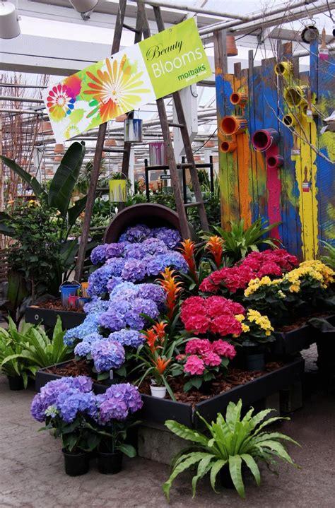 Garden Center Display Ideas 269 Best Garden Center Display Ideas Images On