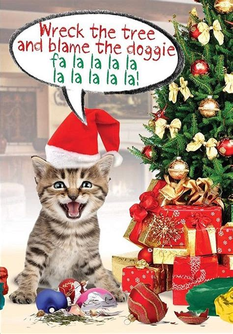 cute  funny cat christmas cards cat christmas cards christmas cats christmas humor