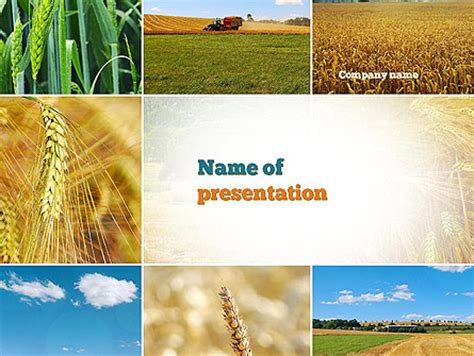 Agriculture Powerpoint Presentation Templates And Backgrounds Poweredtemplate Com Agriculture Powerpoint Templates