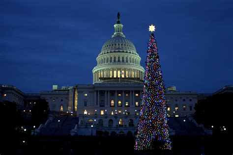 file united states capitol and 2011 christmas tree 01 jpg