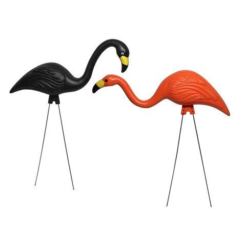 bloem spooky flamingo 2 pack g8 the home depot