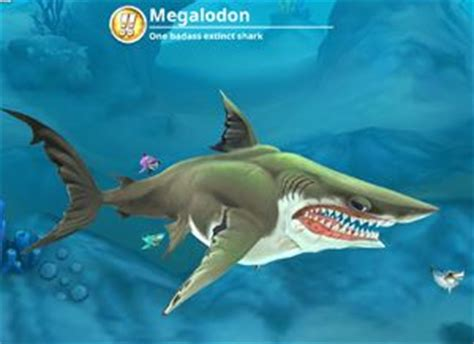 megalodon (world) hungry shark wiki wikia