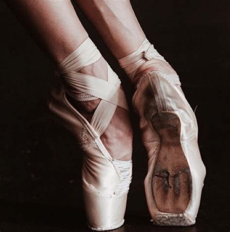 ballet beautiful october 27 2015 zsazsa bellagio like