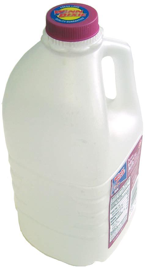 Milk Jug Vase by Items To Recycle
