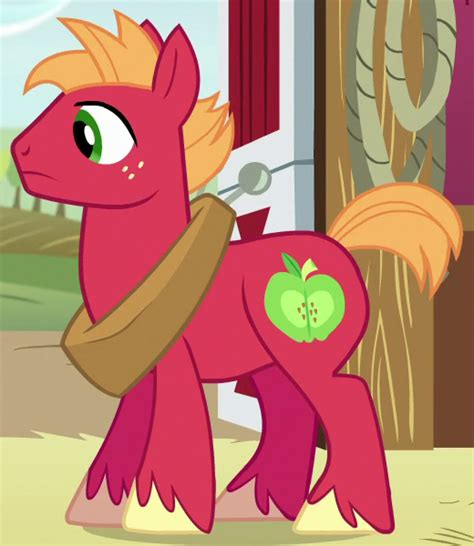 sugar magic a dash of trouble books big mcintosh my pony friendship is magic wiki